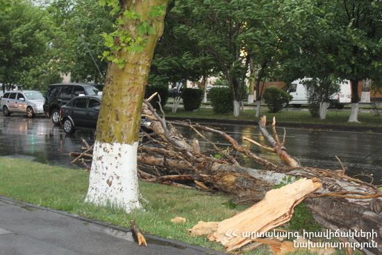 Ուժեղ քամու հետևանքով գրանցվել է 446 դեպք (թարմացված)