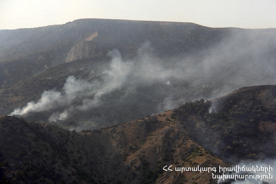 Директор «Хосровского леса»: Ущерб от пожара на территории заповедника просто неоценим