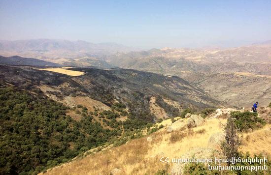 МЧС Армении: В заповеднике «Хосровский лес» потушены 100 дымящихся после пожара очагов
