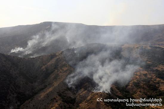 Д. Тоноян: Сотрудники Минохраны природы Армении продолжают борьбу за спасение каждого дерева в «Хосровском лесу»