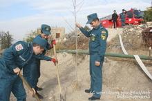 Спасатели приняли участие в посадке деревьев