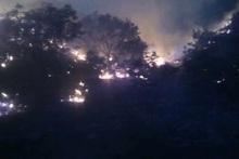 Մեղրի քաղաքի սկզբնամասում այրվել է բուսածածկ տարածք