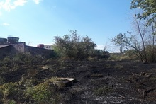Հսկվող այրում մոտ 11,4 հեկտար տարածքում