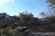 Контролируемое сжигание на территории около 11,4 гектаров