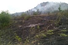 Пожарные-спасатели потушили пожары на травяных участках около 53 га