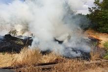 Пожарные-спасатели потушили пожары на травяных участках около 52.6 га