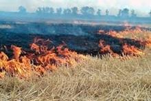 Пожарные-спасатели потушили пожары на травяных участках около 28 га