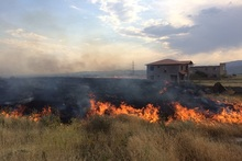 Firefighters extinguished fire broken out in about 31 ha grass areas