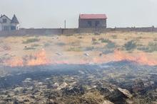 Քանաքեռավան գյուղում այրվել է մոտ 10 հա բուսածածկույթ