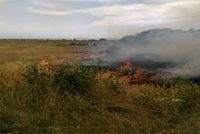 Пожарные-спасатели потушили пожары на травяных участках около 53.6 га