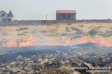 В селе Канакераван сгорело около 10 га растительного покрова
