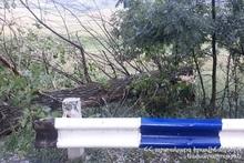 Спасатели убрали дерево с проезжей части дороги