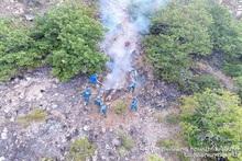 Խոշոր հրդեհ է բռնկվել Լեհվազ-Վարդանիձոր ավտոճանապարհից «Արևիկ» ազգային պարկ ընկած հատվածում (լրացված)
