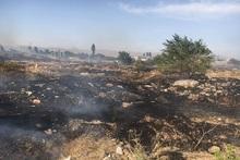 Пожарные-спасатели потушили 83 пожара на травяных участках около 137 га, привлекая 102 пожарно-спасательных отряда и 8 оперативных групп