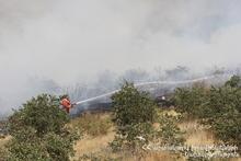 Сгорело около 25 га травяного участка
