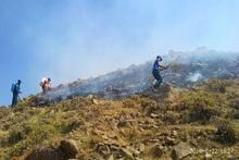 Շիրակ գյուղում այրվել է 40 հա խոտածածկույթ