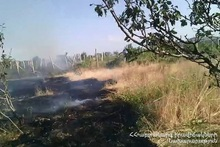 10 ha of grass cover was burnt in Aragyugh village