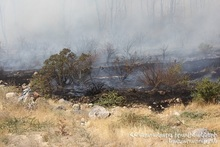Пожар на автодороге Прошян-Сасуник: сгорело около 50 га травяного участка