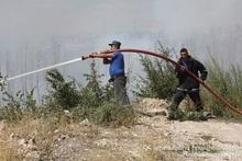 В селе Барекамаван сгорело около 10 га травяного участка