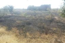 Հրդեհ Պռոշյան գյուղում. այրվել է 10 հա խոտածածկ տարածք