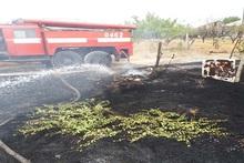 Пожарные-спасатели потушили 29 пожаров на травяных участках около 7 га с участием 31 пожарно-спасательного отряда
