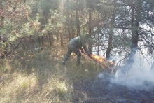 Firefighters extinguished fires broken out in grasslands with a total area of about 33.5 hectares
