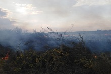 Firefighters extinguished fires broken out in grasslands with a total area of about 27.5 hectares