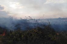 Пожарные-спасатели потушили пожары на травяных участках общей площадью около 27.5 га