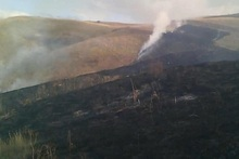 About 20 ha of grass area burnt