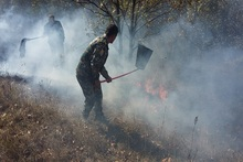 Пожарные-спасатели потушили пожары на травяных участках общей площадью около 9.5 га