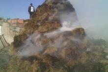 Այրվել է մոտ 800 հակ անասնակեր