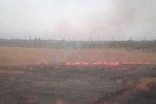 Firefighters extinguished fires broken out in grasslands with a total area of about 16 hectares