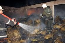 Այրվել է մոտ 4000 հակ անասնակեր