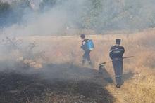 Пожарные-спасатели потушили пожары на травяных участках общей площадью около 231 га