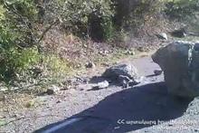 Обломок скалы упал на проезжую часть автодороги