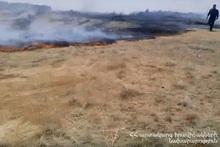 Пожарные-спасатели потушили пожары на травяных участках общей площадью около 138 га