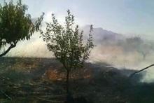 В селе Гетап сгорело около 10 га травяного  покрова