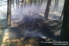 Пожар на территории, ведущей из города Дилижан к туннелю