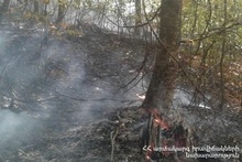 """Fire in the territory of """"Dilijan National Park"""" SNCO"""