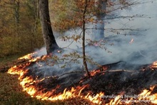 "Fire in a field called ""Gyorer"" in Artsvaberd village"