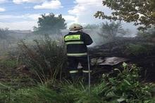 В городе Дилижан сгорело около 4 га сухих лесных листьев, 25 пней и два сухих дерева