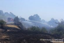 Пожарные-спасатели потушили пожары на травяных участках общей площадью около 407 га