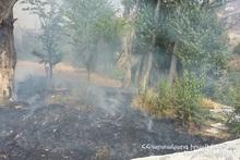 Fire in Berd town