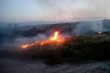 Firefighters extinguished fires broken out in grasslands with a total area of about 21 hectares