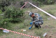 Սարիգյուղ գյուղում հայտնաբերված արկի պայթուցիչը տեղում վնասազերծվել է