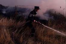 Firefighters extinguished fires broken out in grasslands with a total area of about 43 hectares