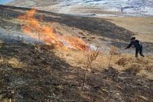 Կրաշեն գյուղի մոտակա սարում այրվել է մոտ 40 հա խոտածածկույթ