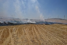 Firefighters extinguished fires broken out in grasslands with a total area of about 1.4 hectares
