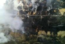 Տներից մեկի բակում այրվել է մոտ 300 հակ անասնակեր