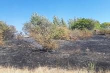 Կաթնաղբյուր գյուղի վերջնամասում այրվել է մոտ 30 հա խոտածածկույթ